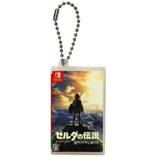 Nintendo Switch専用カードポケットmini ゼルダの伝説 【Switch】