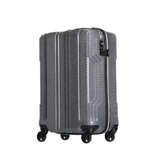 新素材【PCファイバー】を採用 TSAロック搭載 ジッパーキャリー(35L) 5603-48 シルバー