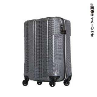 新素材【PCファイバー】を採用 TSAロック搭載 ジッパーキャリー(57L) 5603-59 シルバー