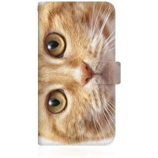 NYAGO iPhone8p スリム手帳型ケース NYAGO ノート キュート 甘えんぼう 茶トラ ペロペロするにゃ~。 猫 お目々 らんらん にゃ にゃんだ? iPhone8p-BNG2S2755-78