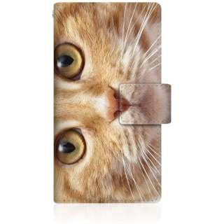 NYAGO iPod-touch6 スリム手帳型ケース NYAGO ノート キュート 甘えんぼう 茶トラ ペロペロするにゃ~。 猫 お目々 らんらん にゃ にゃんだ? iPod-touch6-BNG2S2755-78