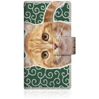 NYAGO iPod-touch6 スリム手帳型ケース NYAGO ノート キュート 甘えんぼう 茶トラ 猫 ペロペロするにゃ~。 にゃんとも 和風 だにゃ~。 iPod-touch6-BNG2S2759-78 唐草模様 緑