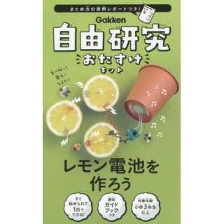 自由研究おたすけキット レモン電池を作ろ