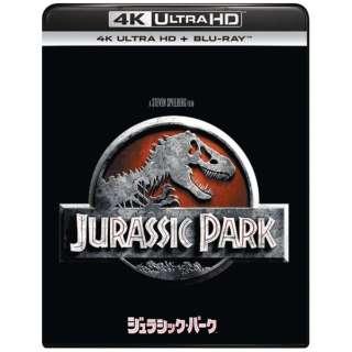 ジュラシック・パーク [4K ULTRA HD + Blu-rayセット] 【Ultra HD ブルーレイソフト】