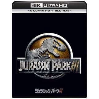 ジュラシック・パークIII [4K ULTRA HD + Blu-rayセット] 【Ultra HD ブルーレイソフト】