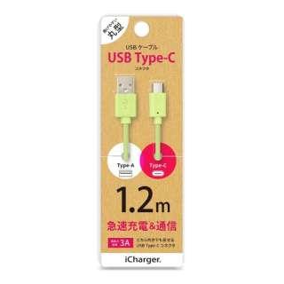 [Type-C]ケーブル 1.2m グリーン PG-CUC12M05 [1.2m]