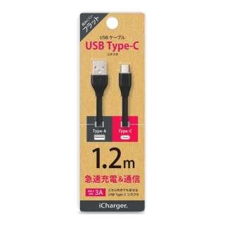 [Type-C]フラットケーブル 1.2m ブラック PG-CUC12M06 [1.2m]