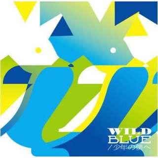 PENGUIN RESEARCH/ WILD BLUE/少年の僕へ 初回生産限定盤 【CD】