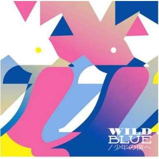 PENGUIN RESEARCH/ WILD BLUE/少年の僕へ 通常盤 【CD】
