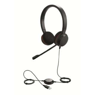 ヘッドセット Jabra Evolve 20 SME 100-55900000-99