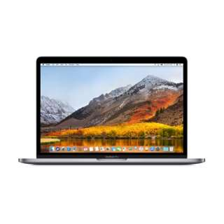 MacBookPro 13インチ Touch Bar搭載モデル[2018年/SSD 256GB/メモリ 8GB/2.3GHzクアッドコア Core i5]スペースグレイ MR9Q2J/A