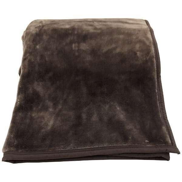 ラフィーナニューマイヤー毛布(シングルサイズ/140×200cm/ブラウン)