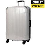 【アウトレット品】 フレームタイプスーツケース 56L ホワイトカーボン 6012-60-WHCB [TSAロック搭載] 【数量限定品】