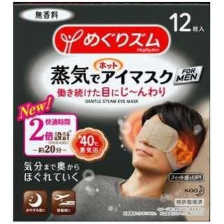 めぐりズム 蒸気でホットアイマスク FOR MEN 12枚