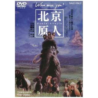 北京原人 Who are you? 【DVD】