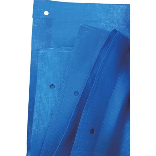 旭産業 アサヒ ブルーシート #3000 ノンメタルハトメ 10mX10m BS-NA1010 1枚 855-2175