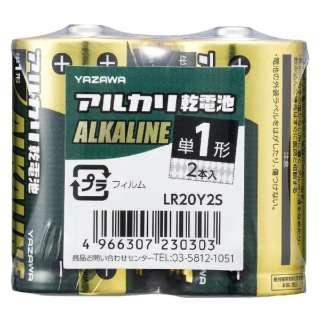 LR20Y2S 単1電池 [2本 /アルカリ]