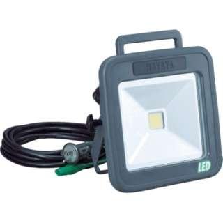 ハタヤ 白色LED 30W