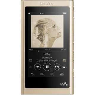 ウォークマン WALKMAN  2018年モデル NW-A55NM Aシリーズ ペールゴールド [16GB /ハイレゾ対応]