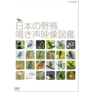 日本の野鳥 鳴き声映像図鑑 【DVD】