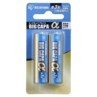 LR6IB/2B 単3電池 BIG CAPA α(ビッグキャパ) [2本 /アルカリ]