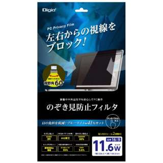 PC用のぞき見防止フィルタ 11.6W SFFLGPV116W