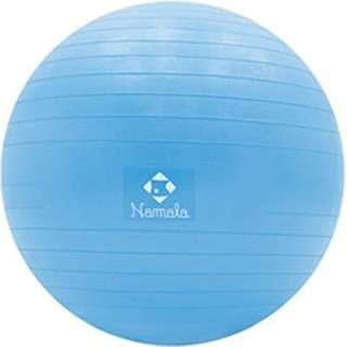 バランスボール(φ65cm/適応身長:160~175cm) NA5039【ノンバーストタイプ】