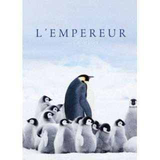 皇帝ペンギン ただいま 【DVD】