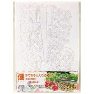 彩で彩る大人の塗り絵奈良の四季2