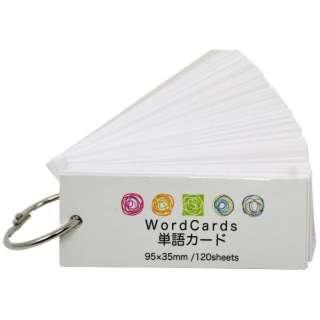 単語カード中PP120枚 PP表紙