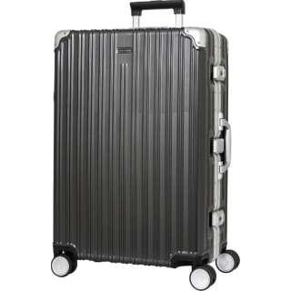 6d324d7cc LOJELBOSS frame hardware carry 70 L LB-0781-64GM cancer metallic