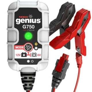 G750 genius バッテリーチャージャー 6V&12V 750mA