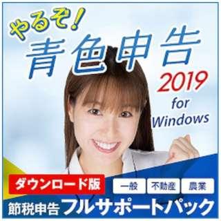 やるぞ!青色申告2019 節税申告フルサポートパック [Windows用] 【ダウンロード版】