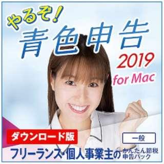 やるぞ!青色申告2019 フリーランスのかんたん節税申告パック [Mac用] 【ダウンロード版】