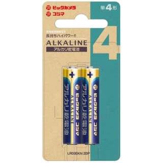 【単四形】 2本 アルカリ乾電池 LR03BKN 2BP