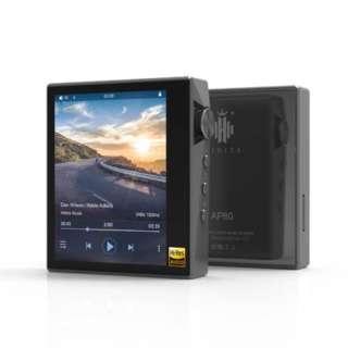 デジタルオーディオプレーヤー Glay AP80-GY [1TB /ハイレゾ対応]