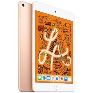 iPad mini 7.9インチ Retinaディスプレイ Wi-Fiモデル MUQY2J/A(64GB・ゴールド)(2019) [64GB]