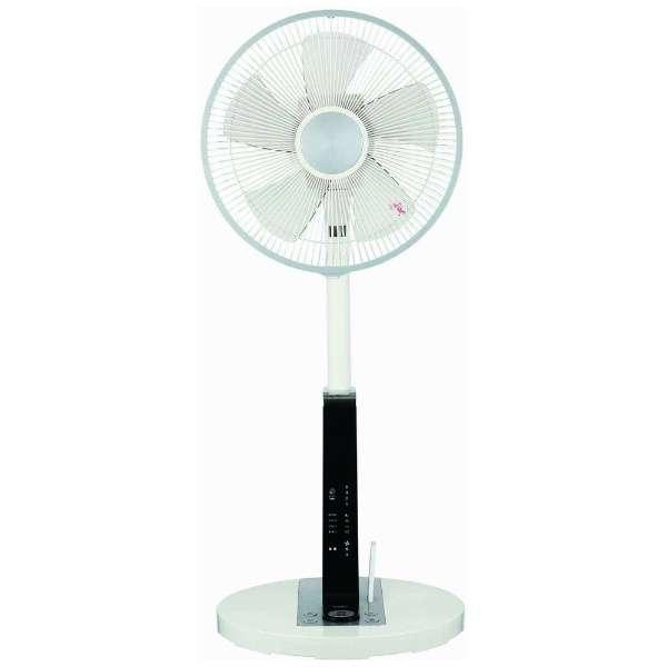 CFSR603WH-WH リビング扇風機 ホワイト [リモコン付き]