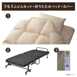 【寝具3点セット】羽毛ふとんセット+折りたたみベッド+カバー(シングルサイズ)