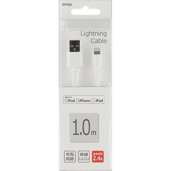 USB-Lightning 1M 2.4A U1L982