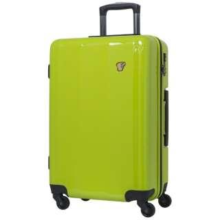 スーツケース ハードジッパーキャリー 34L グリーン PK-0792-48GN