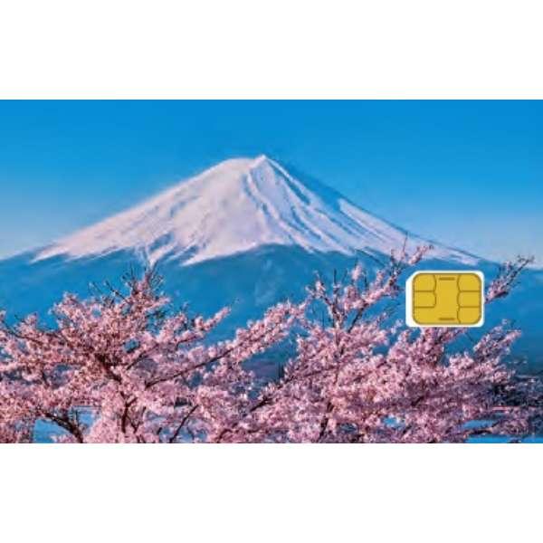 Prepaid SIM for Travel セット (MF1) ZGP939 [SMS非対応 /マルチSIM]