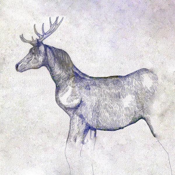 米津玄師/ 馬と鹿 映像盤(初回限定)