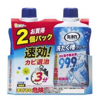 洗浄力洗たく槽クリーナー 2P 1100g