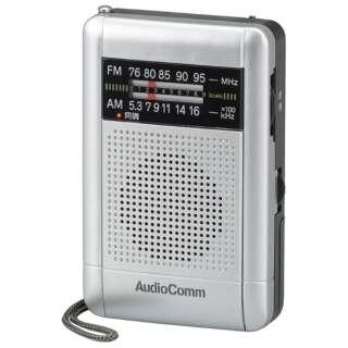 DSP内蔵ダイヤルラジオ RAD-H235N [AM/FM /ワイドFM対応]