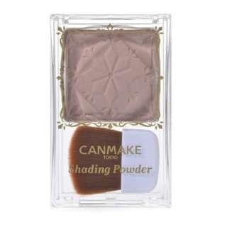CANMAKE (キャンメイク)シェーディングパウダー 04アイスグレーブラウン