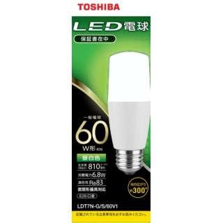 LED電球(T形)60W相当 昼白色 口金E26 LDT7N-G/S/60V1