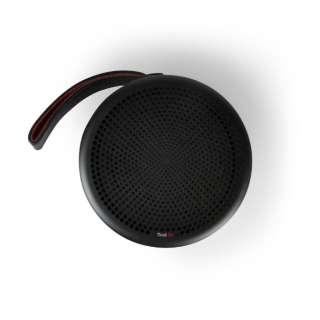 ブルートゥーススピーカー Tivoli Go Andiamo TGAND-1899-JP ブラック [Bluetooth対応]