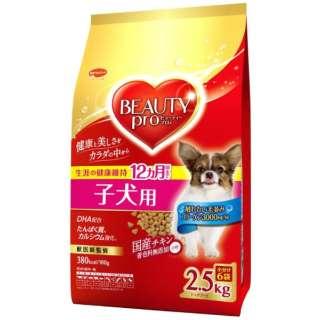 ビューティープロドッグ子犬用12ヵ月頃まで2.5kg