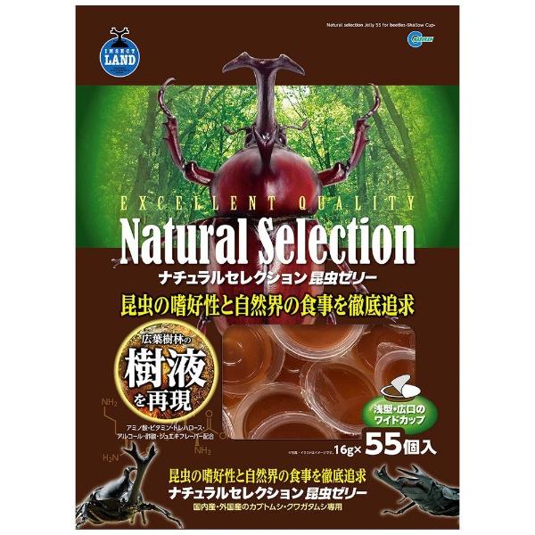 マルカン ナチュラルセレクション 昆虫ゼリー55 55個